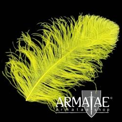 Male Wing 50 - 60 cm Gelb