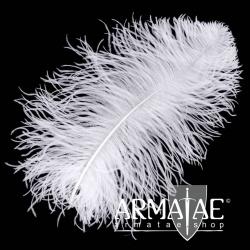 Male Wing 40 - 50 cm Weiß