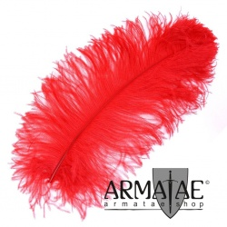 Male Wing 40 - 50 cm Rot