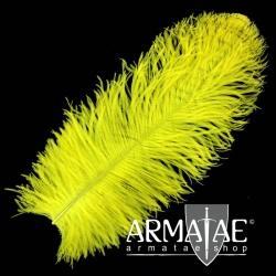 Male Wing 40 - 50 cm Gelb