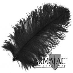 Male Wing 40 - 50 cm Schwarz